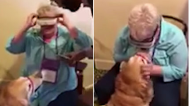 Special high tech glasses help blind woman Mary Sedgwick see her guide dog for the first time.