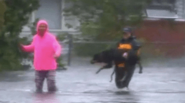 Reporter Julie Wilson from WTVD interrupts her Facebook Live streaming report to help a woman save her daughter's therapy dog in New Bern, NC during Hurricane Florence flooding.
