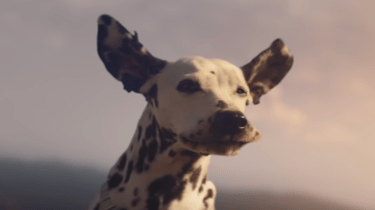 My favorite 2019 Super Bowl Ads.