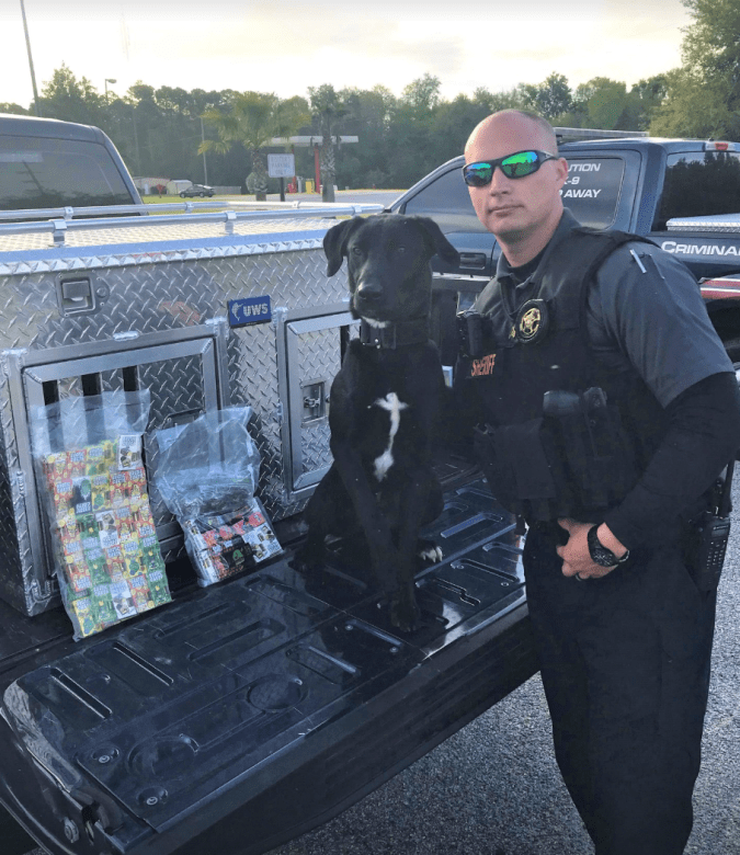 Triton goes from homeless dog in squalid conditions to becoming top notch narcotics K9 in Darien, Georgia.