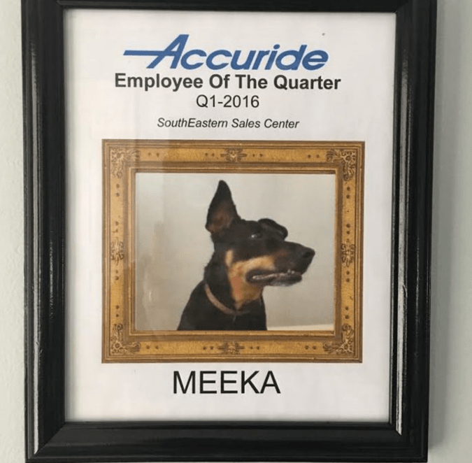One of Meeka's Employee of The Month framed honors. She's on a streak since 2016.