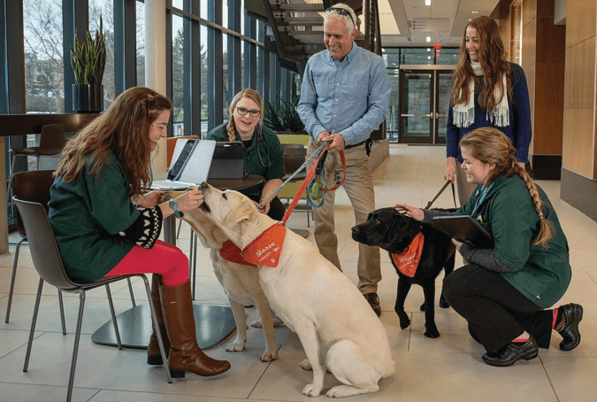 Moose is one busy therapy dog at Virginia Tech helping in thousands of counseling sessions.