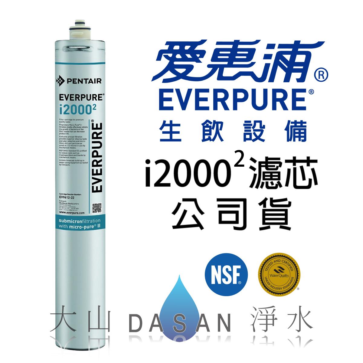 大山淨水 EVERPURE臺灣愛惠浦i20002濾心 | 大山淨水有限公司