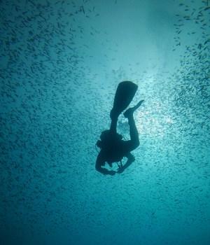 Mediterraneo, un mare da scoprire