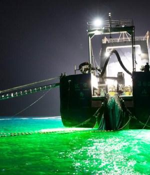 pratiche di pesca distruttive