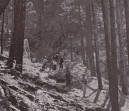 Κατασκευή δασικής οδοποιίας στον Ταΰγετο κατά τη διάρκεια του Εμφυλίου, μ' ένοπλους φρουρούς με το δάκτυλο στη σκανδάλη! (αρχείο Αντώνιου Β. Καπετάνιου)