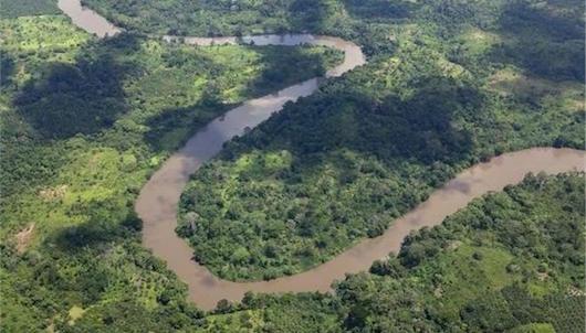 tropiko dasos africa