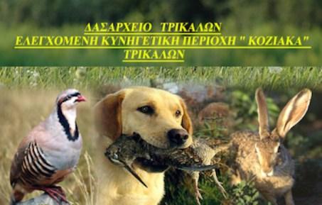 koziakas_