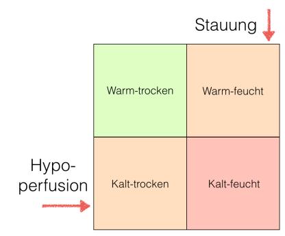 Herzinsuff 1