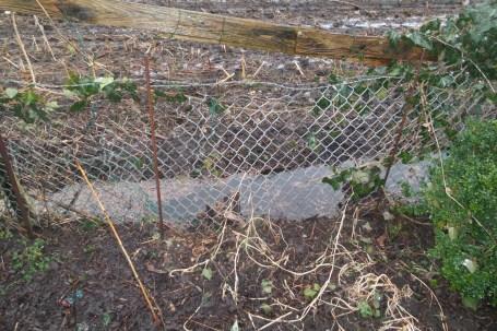 Vor einem Maschendrahtzaun ist ein Graben der bis oben hin mit Wasser gefuellt ist.