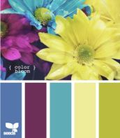 ColorBloom605_1