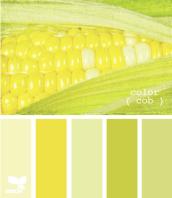 ColorCob610_novyiy-razmer
