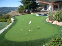 Sharpen Your Stroke With a Backyard Putting Green From ...