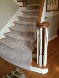 Stain-Resistant & Waterproof Pet-Friendly Carpet Options ...