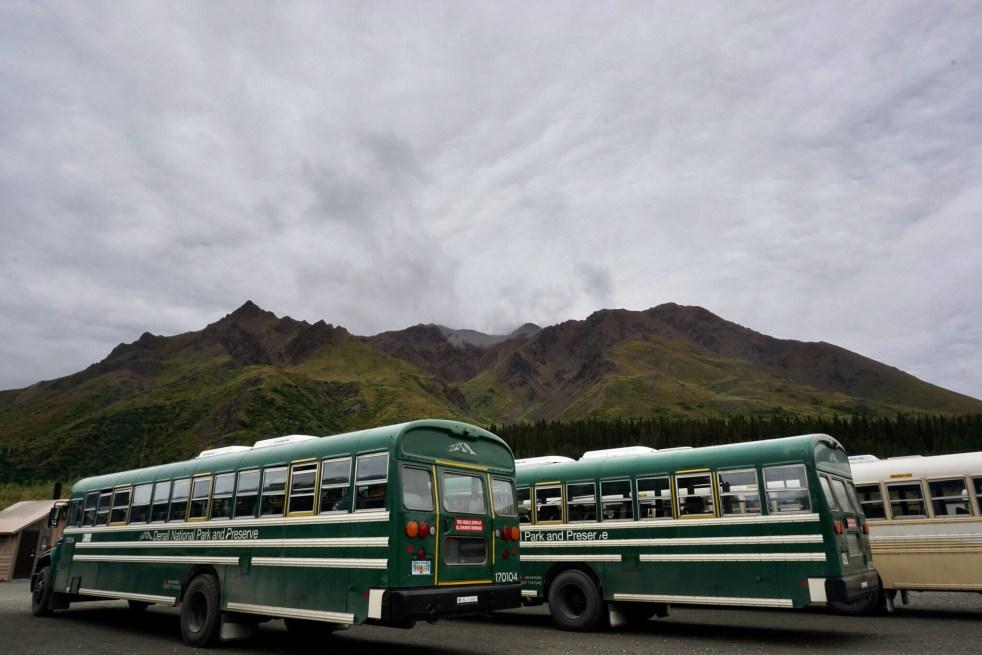Denali Buses