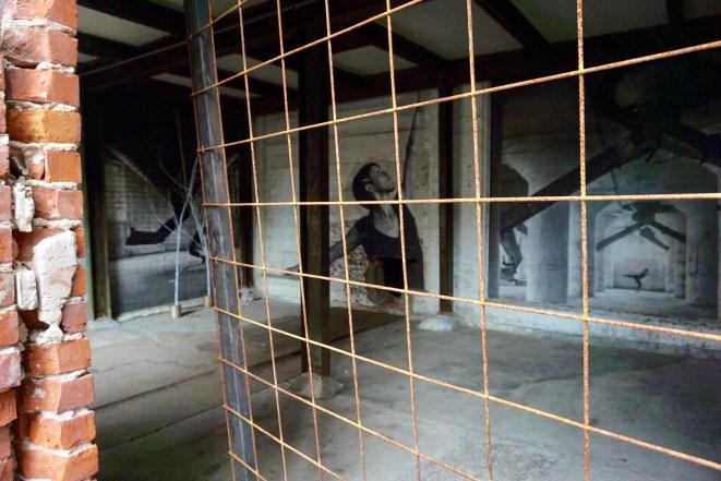 Art installation in Buffalo's silos
