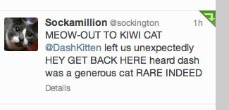 Meow Out From Sockington