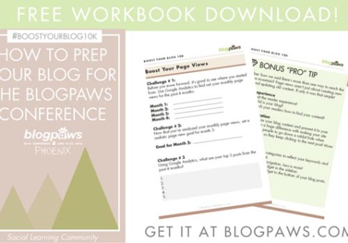 Google Analytics Webinar workbook