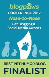 Nose to Nose Finalist Pet Blog Humour