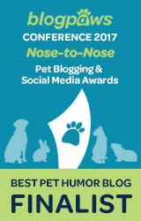 Nose to Nose Finalist Pet Blog Humour