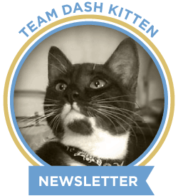 Get our cool monthly newletter