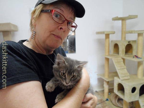 Kitty Corner in Pleasant Hill, CA
