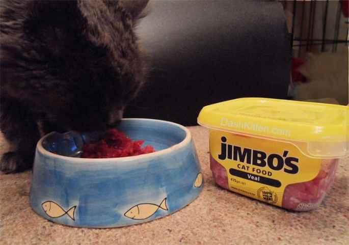 Pet Food Snobs