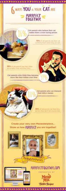 Meow Mix Infographic