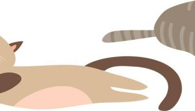 Change a Pet's Life Day graphic of cats asleep
