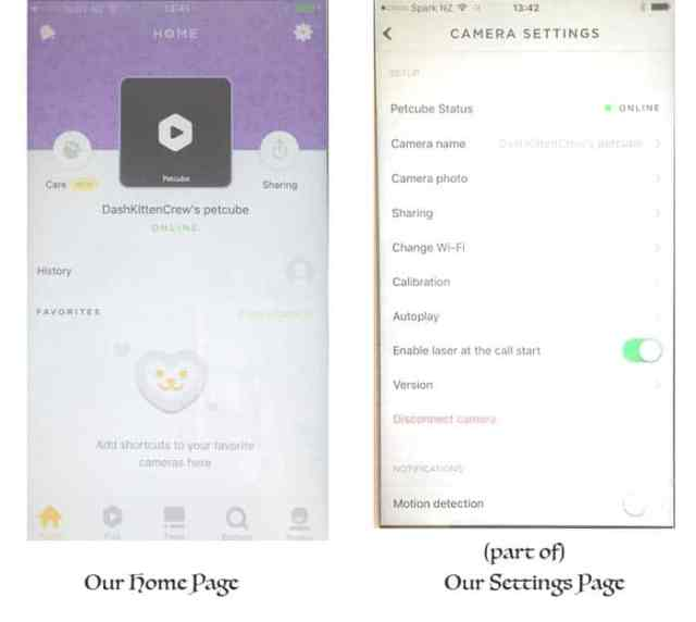 PetCube Play Report The Petcube is so easy to navigate