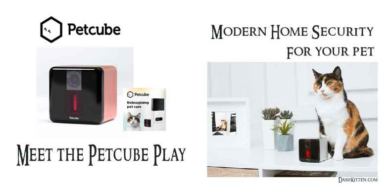 Petcube Smart Home Pet Camera