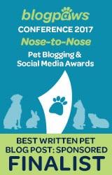 BlogPaws Finalist for PetCube