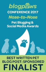 BlogPaws Finalist for PetCube