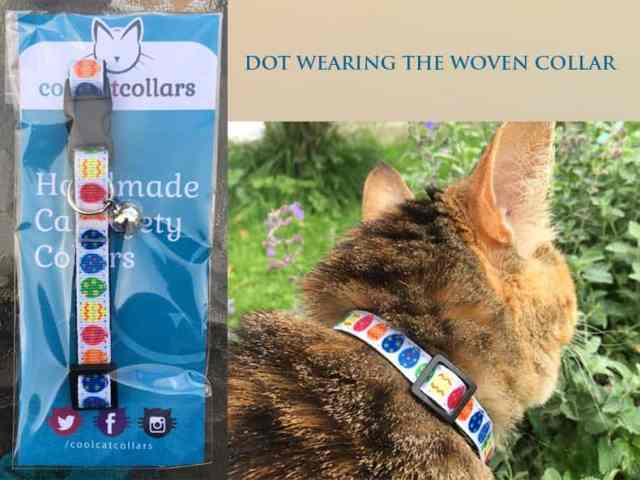 The Cool Cat Collar Company