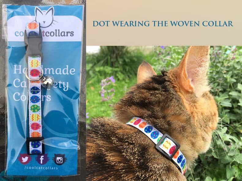 Cool Cat Collars. Catering to Your Cat's Every Whim!