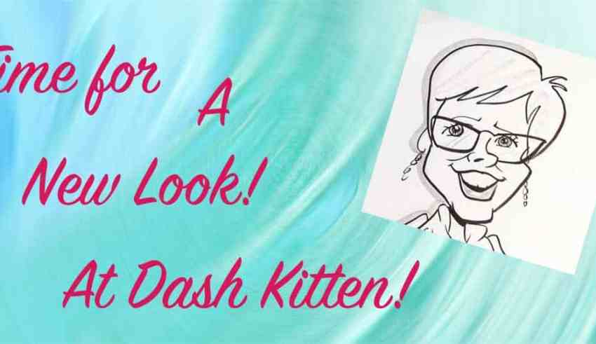 New Look Dash Kitten Blog
