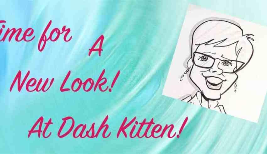 New Look Dash Kitten Blog