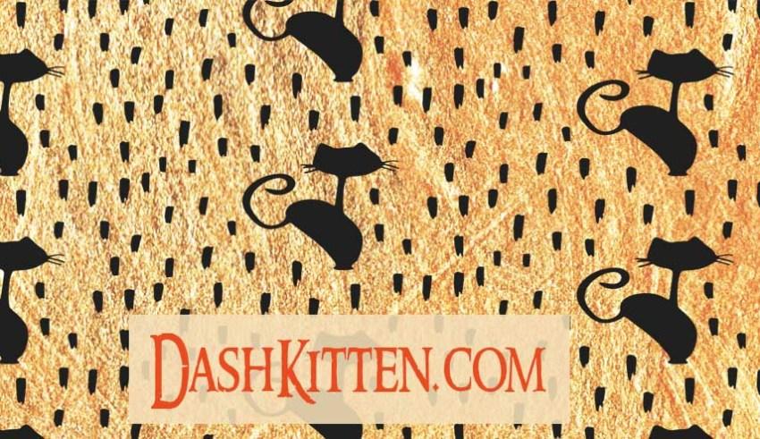 General Background for Dash Kitten