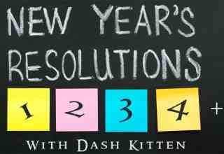 NEW YEAR 2018 Dash Kitten Graphic