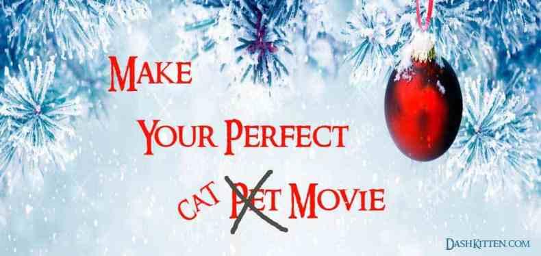 smartphone-cat-Movie fun