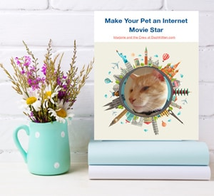 Dash Kitten eBook graphic