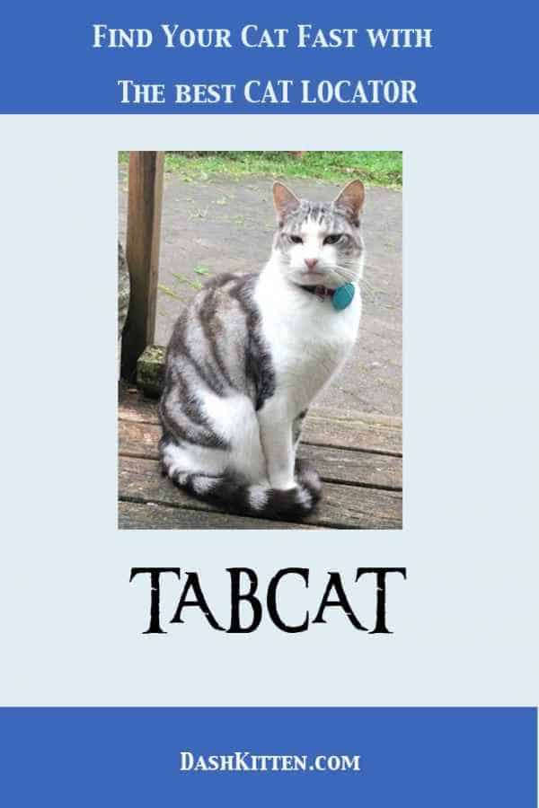 The Best Cat Locator TABCAT Helps Find A Missing Cat. Indoor or outdoor cats can go missing. At those scary times you need a super efficient way to find your cat. Meet Tabcat.