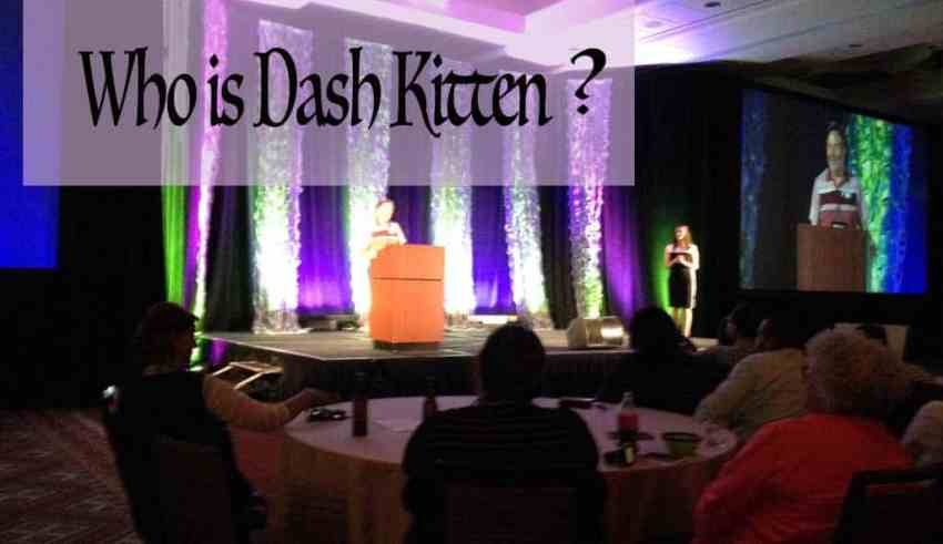 Who is Dash Kitten