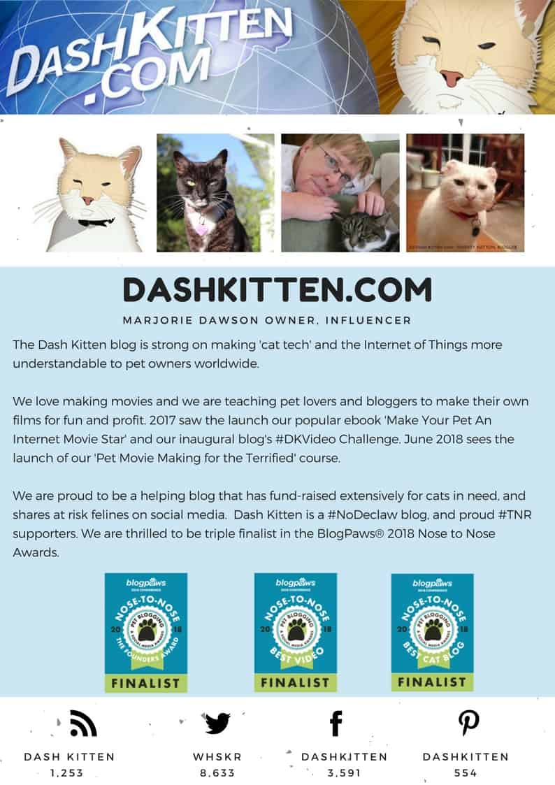 The Dash Kitten Media Page