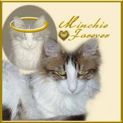 Minchie memorial