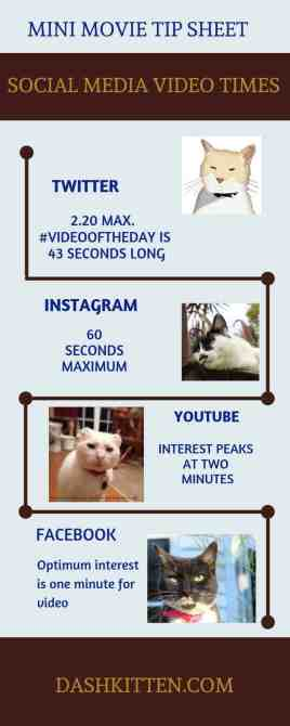 Social Media Video Times Infographic for smartphone users