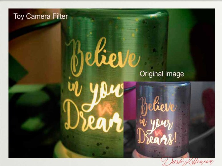 The use of a Canon Creative Filter foound within the camera