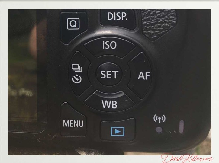 The rear buttons of the Canon Rebel T6 to navigate