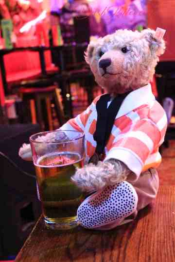 Portrait of a Teddy Bear in a bar. OllyTed the famous bear from Twitter