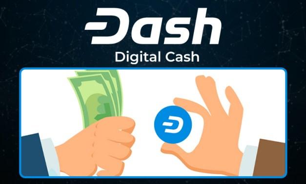 Как бизнесу сэкономить, используя Dash